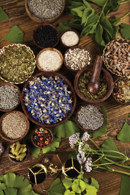 Ancient remedies: Some healing secrets for dental pain have